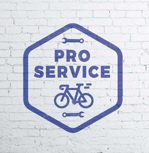 proservice-prtfolio2